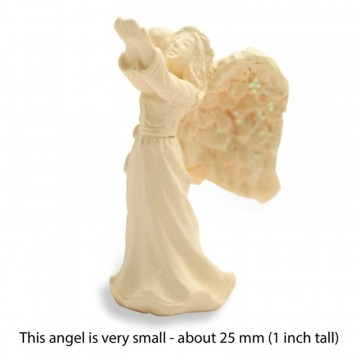 Tiny Amazing Angels 2 cm - Blessing